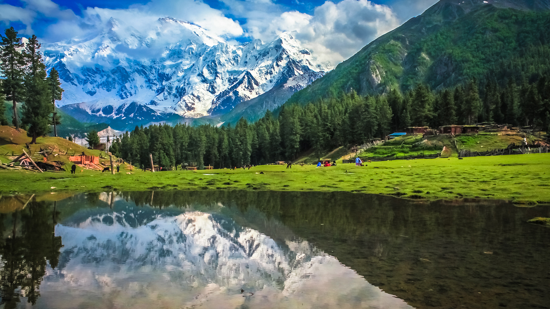 Fairy Meadows Skardu