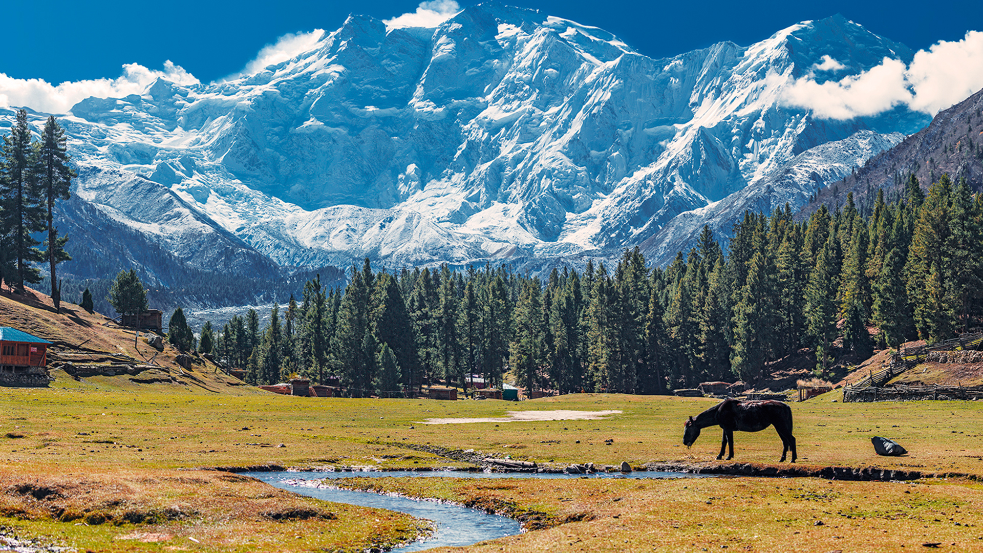 Fairy-Meadows-4